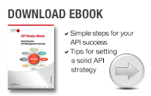 API Ready eBook